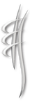 Chirodole Logo